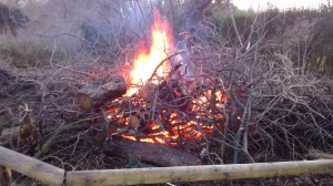 photo of bonfire in Turners Orchard - part of Wassaling celebrations