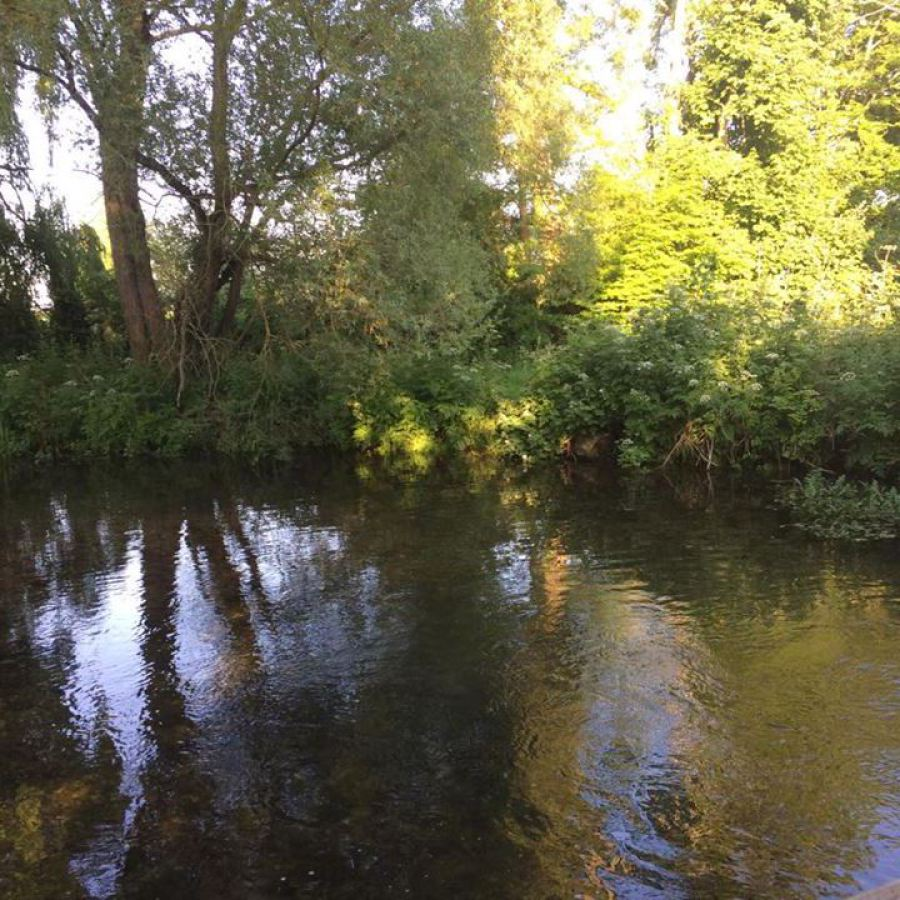 The Little Stour River in summer